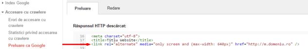 Instrumentele pentru webmasteri   Preluare ca Google   link rel alternate